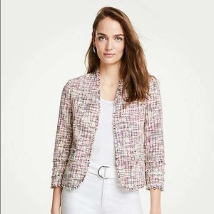 Ann Taylor Rainbow Tweed Blazer